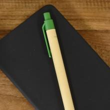 Bolígrafo Eco | Cartón | A todo color | max133